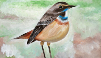 Interesting Paintings of Pretty Birds