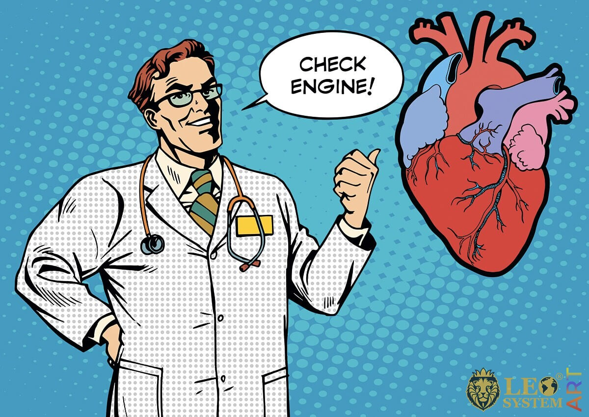 The doctor looks at a large human heart