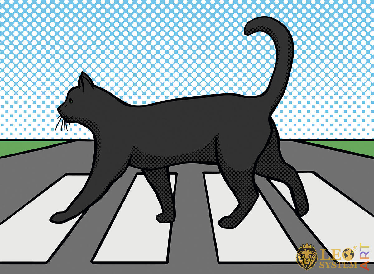 Picture of a cat crossing a pedestrian crossing