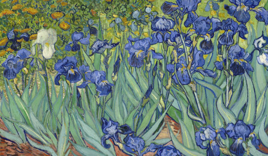 Paintings of the Great Painter Vincent van Gogh with Flowers